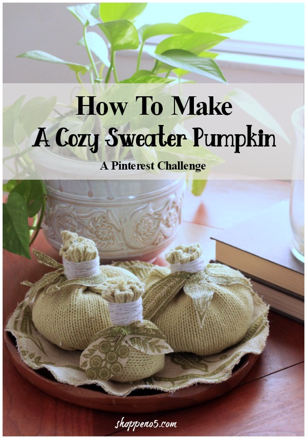 Shoppe-No.-5 How-To-Make-A-Cozy-Sweater-Pumpkin
